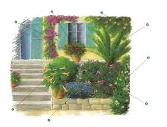 Chilejardin for Diseno jardin mediterraneo